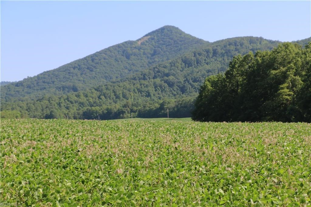 Land for sale  in Lambsburg VA