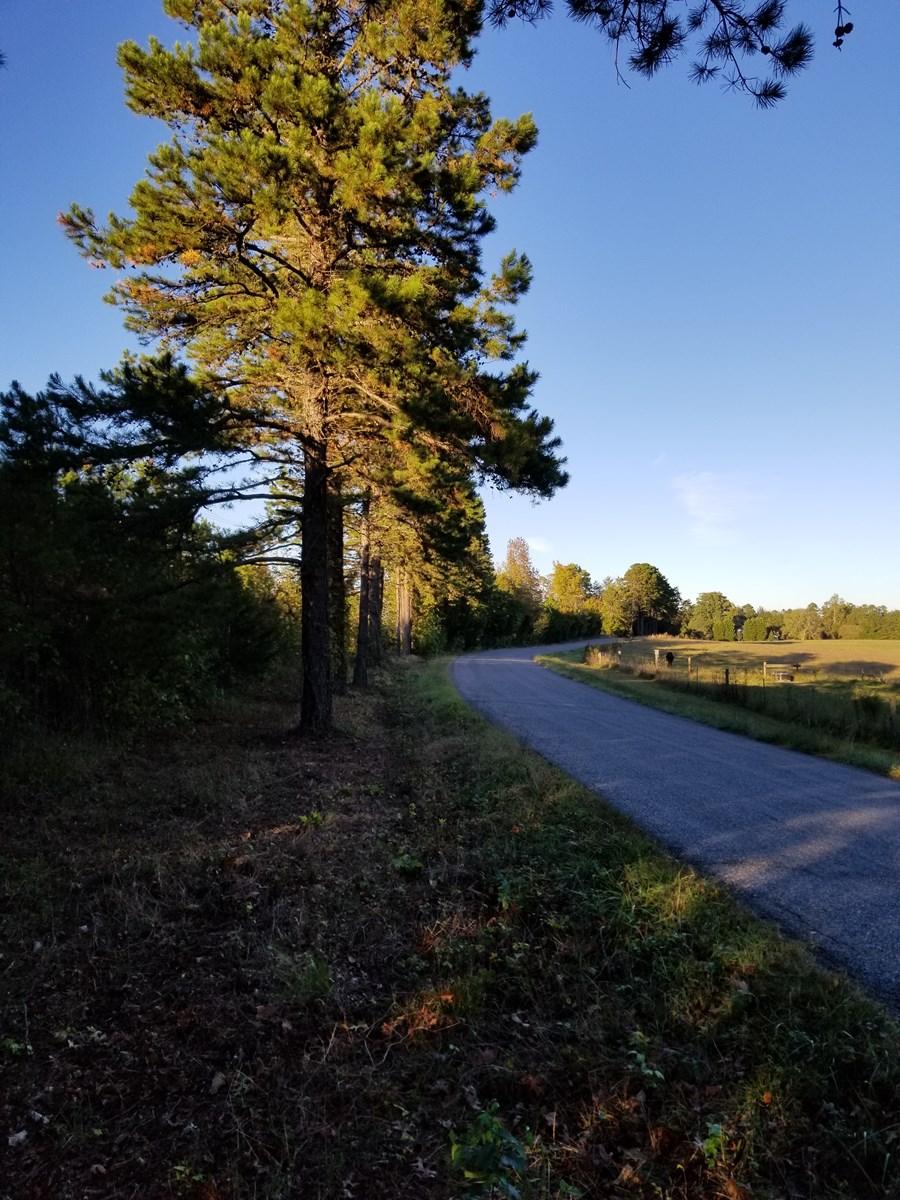 Farmland Opportunity on Mt. Carmel Rd., Halifax, VA