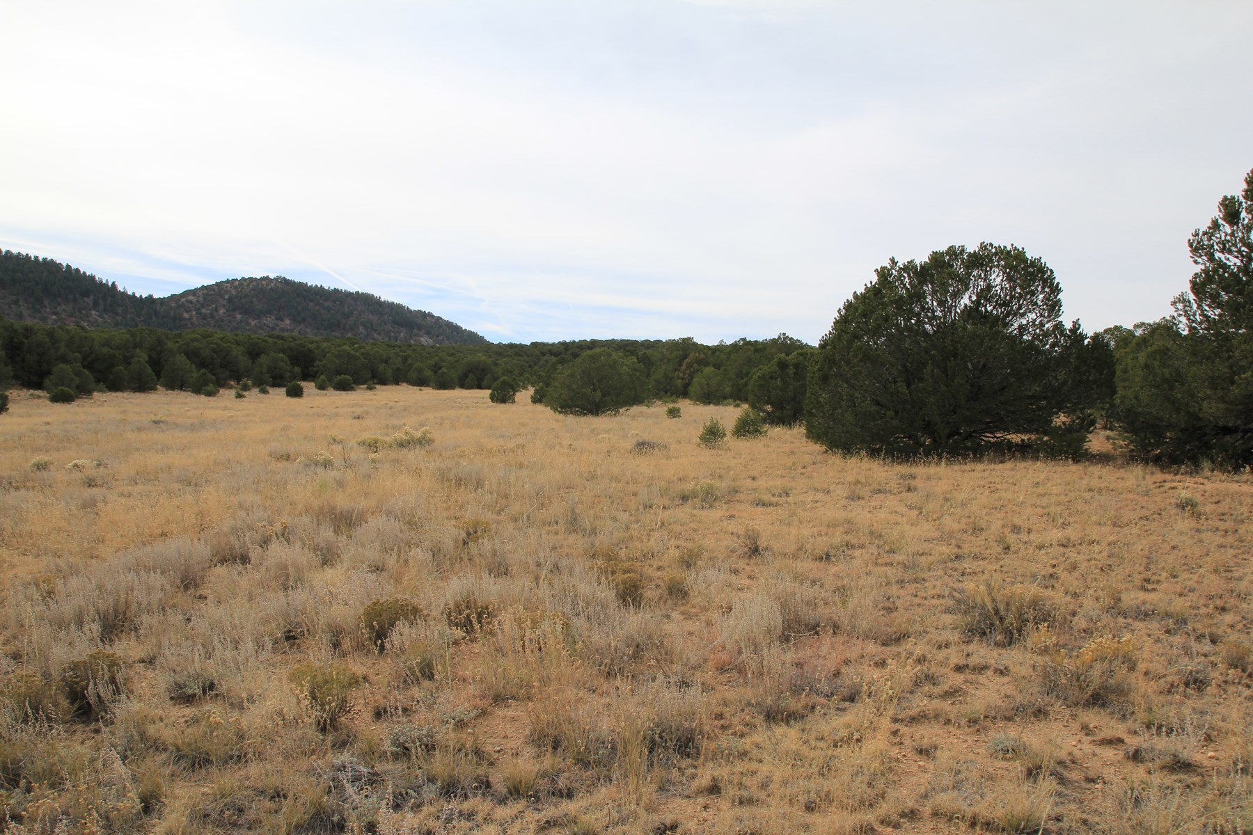Land in Westcliffe Colorado, Custer County
