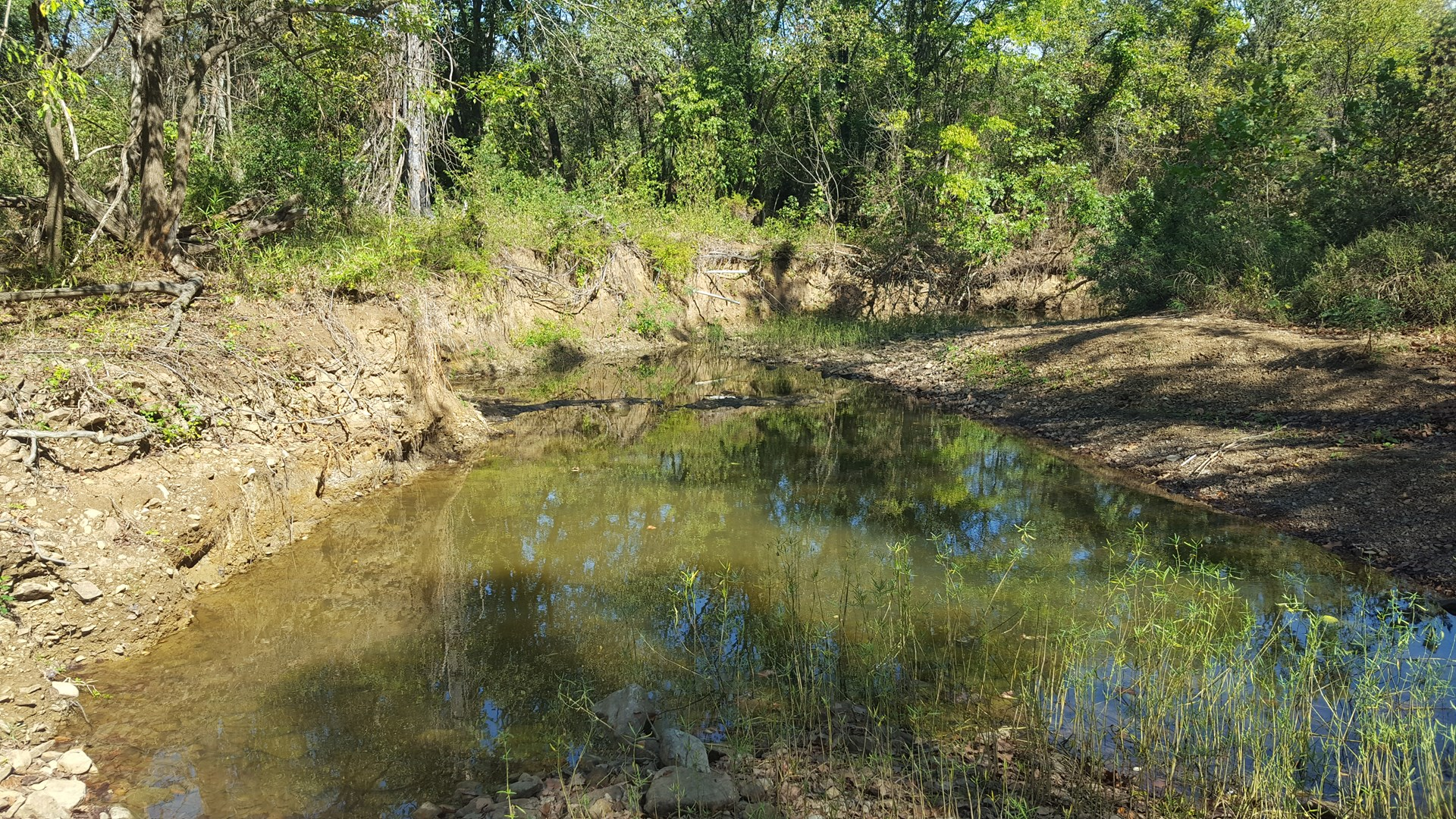 Highway 43 Frontage Land With Creek