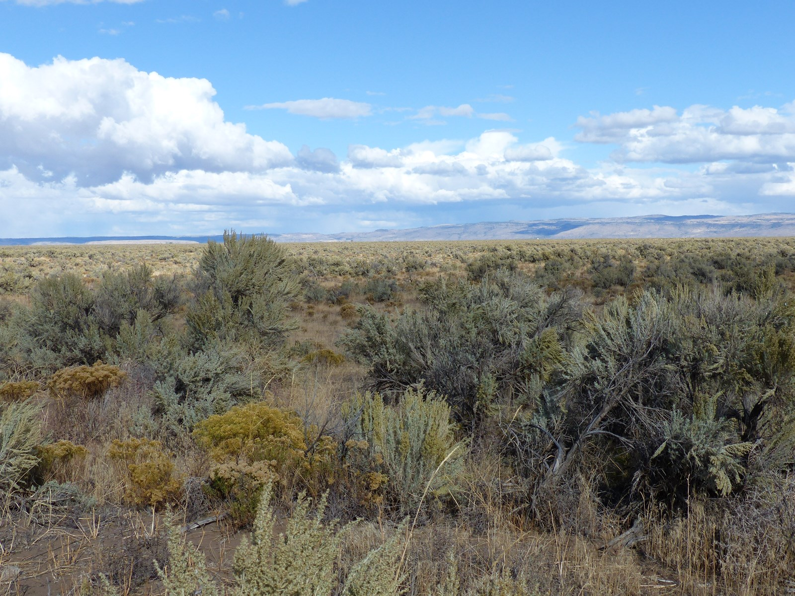 BURNS, OR - 40 ACRES READY FOR HOME WITH POWER & WELL