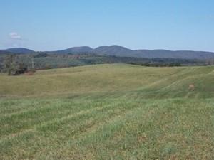 FLOYD COUNTY VA FARM LAND FOR SALE!