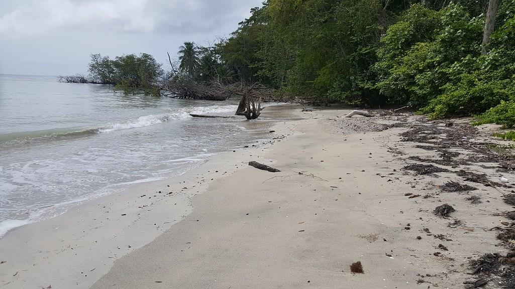 Stunning Bocas del Toro Beachfront over 10 Hectares