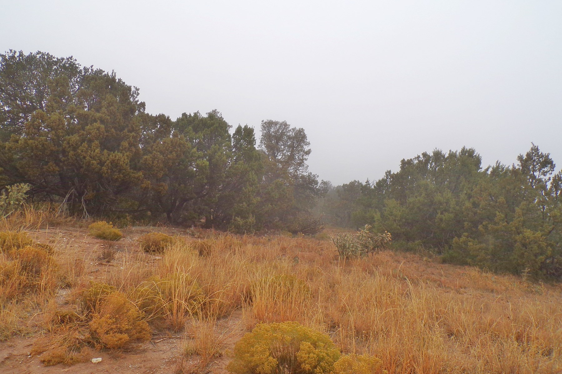 1.867 Acre Lot For Sale in the Town of Edgewood NM