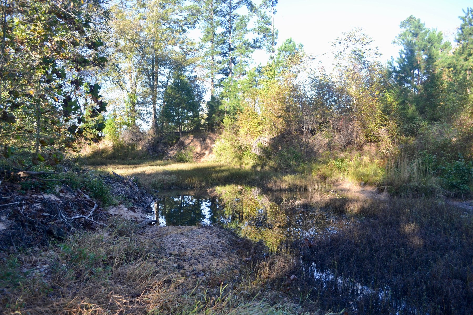 RECREATIONAL HUNTING TIMBER INVESTMENT PROPERTY CHOCTAW OKLA