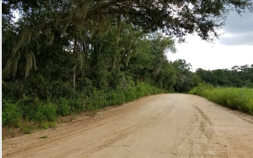 Wooded Land For Sale in North, FL