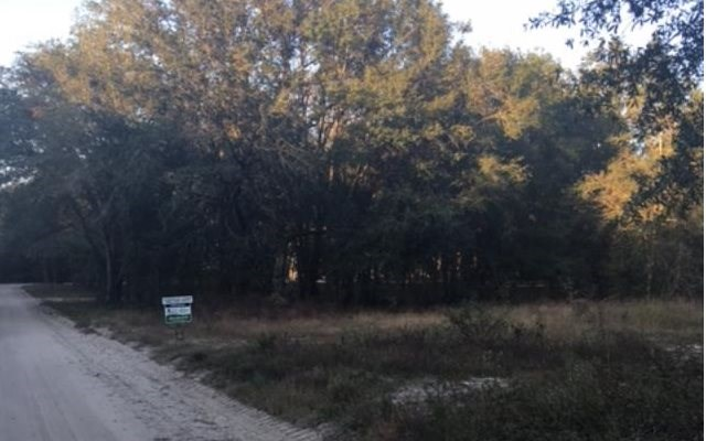 1 Acre Lot in Riverside Estates Subdivision, Mayo, FL