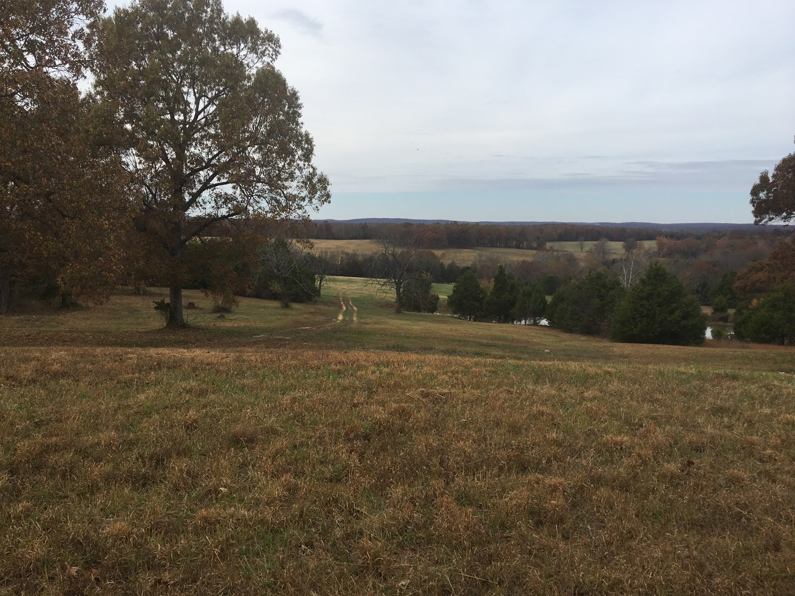 Cattle/Horse Ranch/Hunting Property For Sale in Arkansas