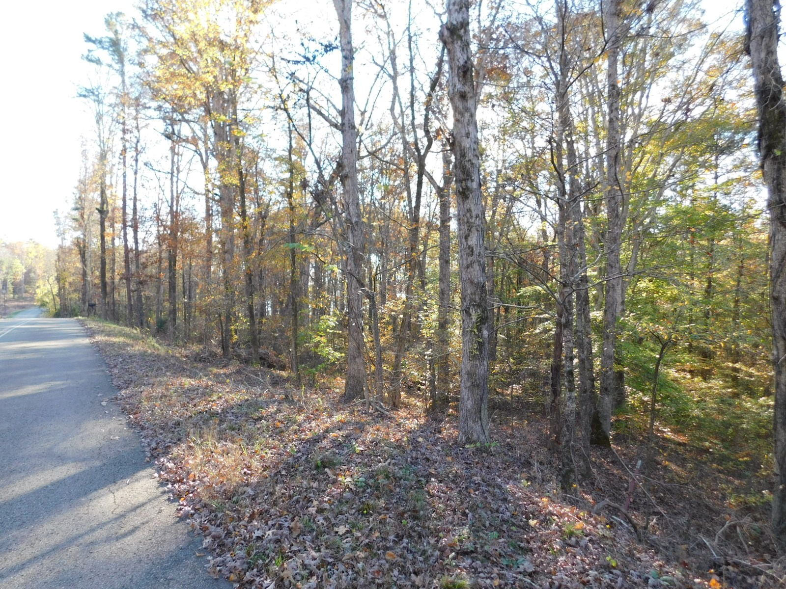 LAND FOR SALE NEAR PICKWICK LAKE NEAR BRUTON BRANCH PARK