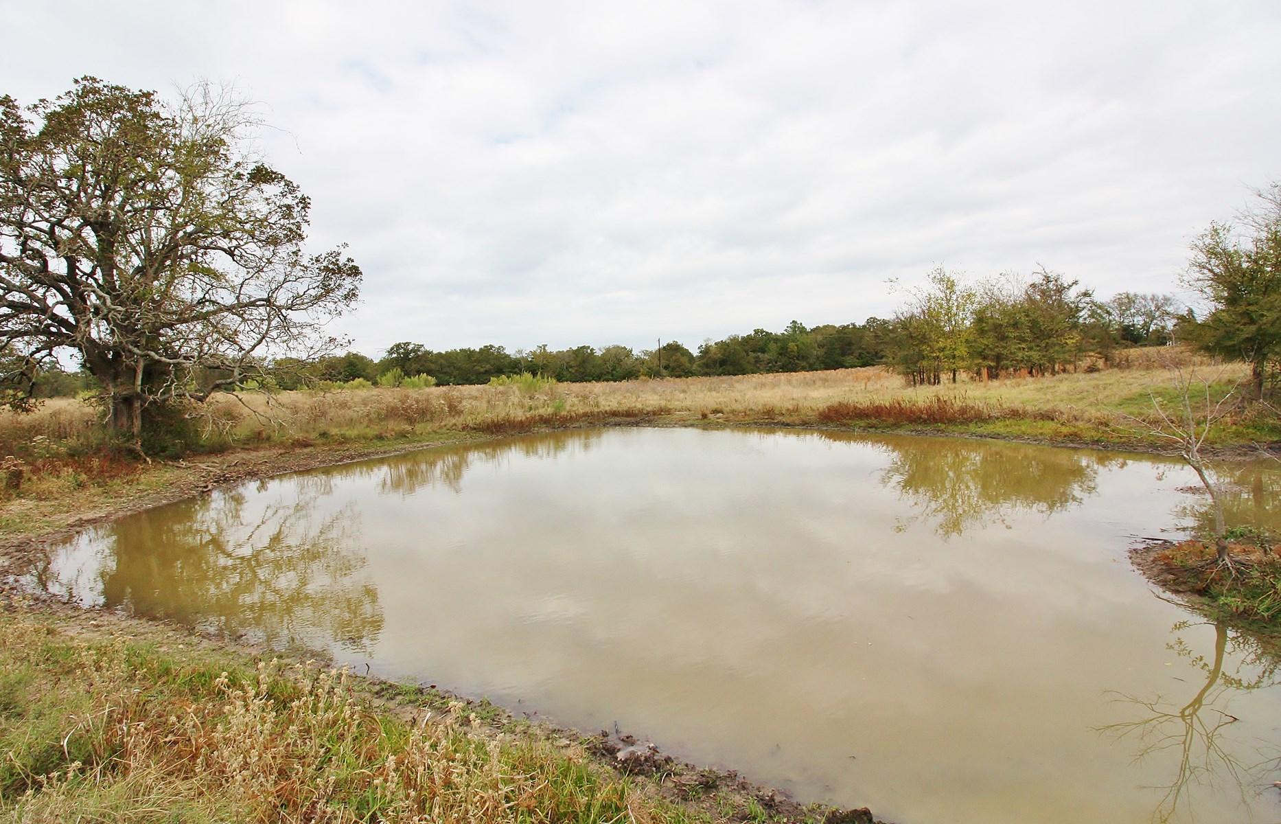 Acreage For Sale - Lake Limestone - Leon County, Texas