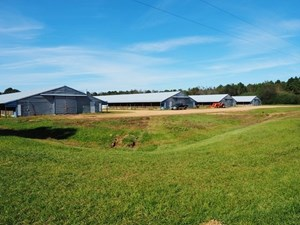 REDUCED!!! POULTRY BROILER FARM 53 ACRES RESIDENCE SW MS