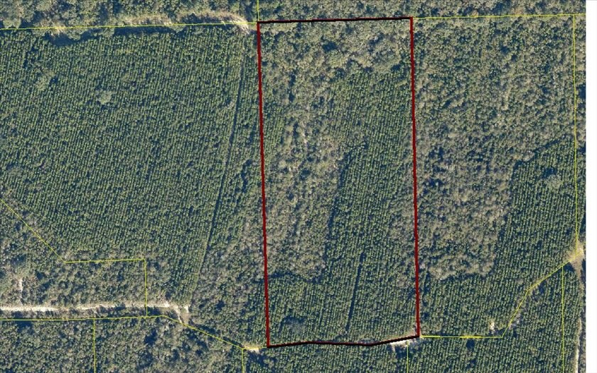 20 Acres in Rural North Florida