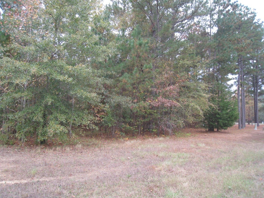 VACANT LOT LAKE PALESTINE IN GATED BROWN'S LANDING