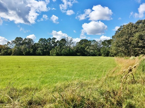 Acreage with Lakes for Sale East Baton Rouge Parish, LA