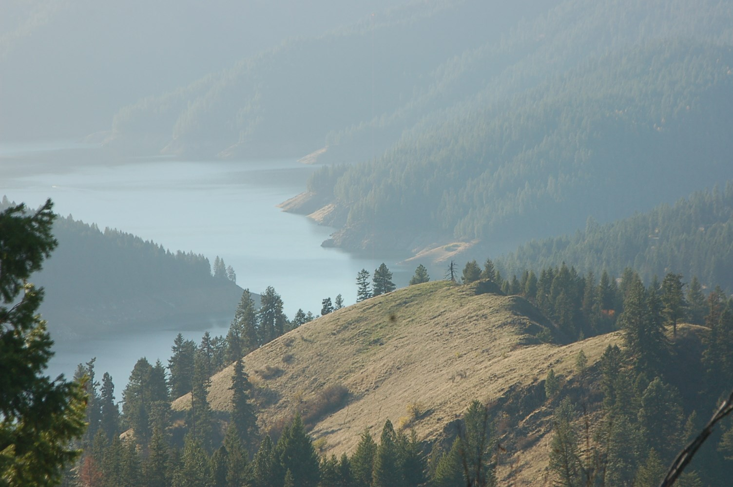 Timber Investment/Hunting Ranch For Sale Orofino Idaho