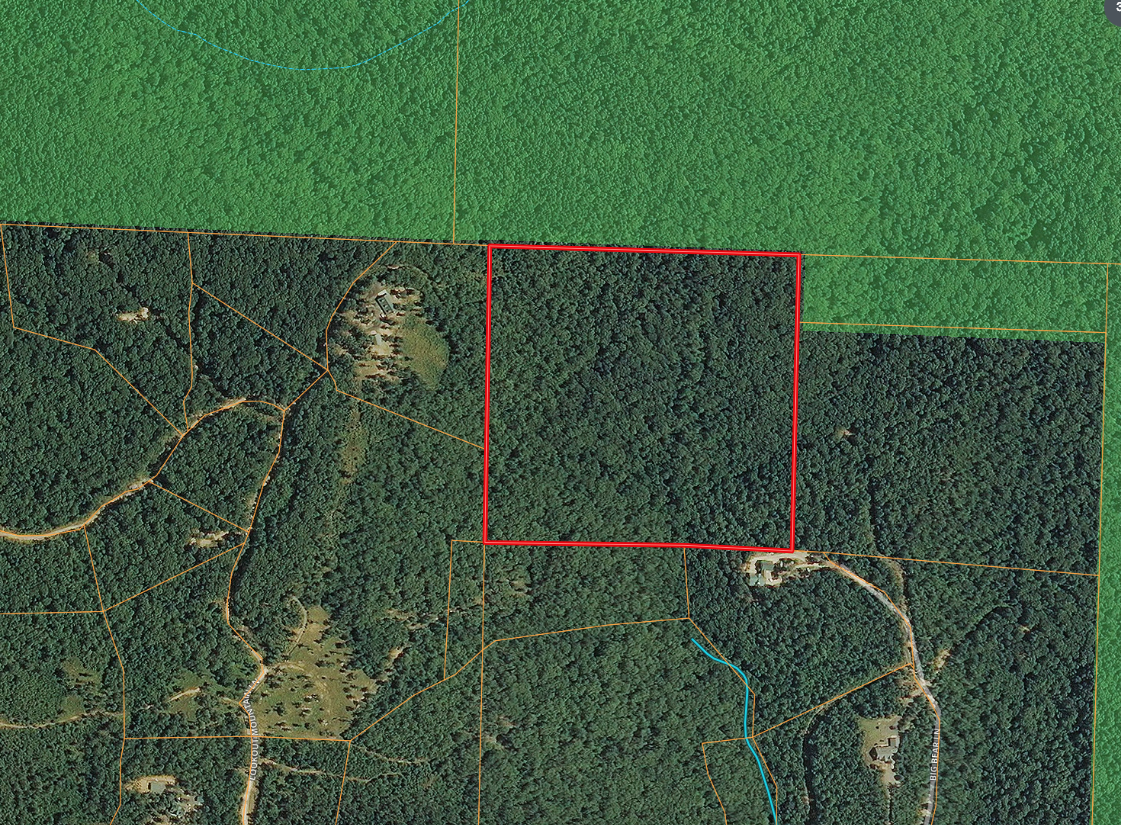 Mountain acreage bordering the Ouachita Nat'l Forest