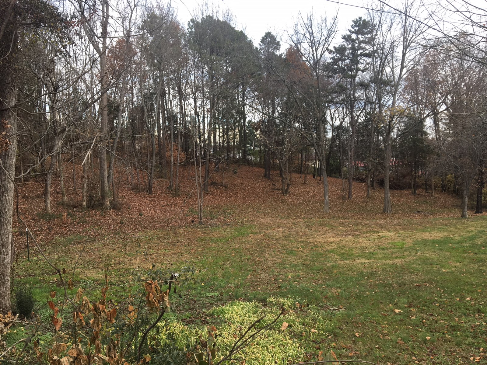 1 Acre Lot in Morristown TN zoned for multi family for sale