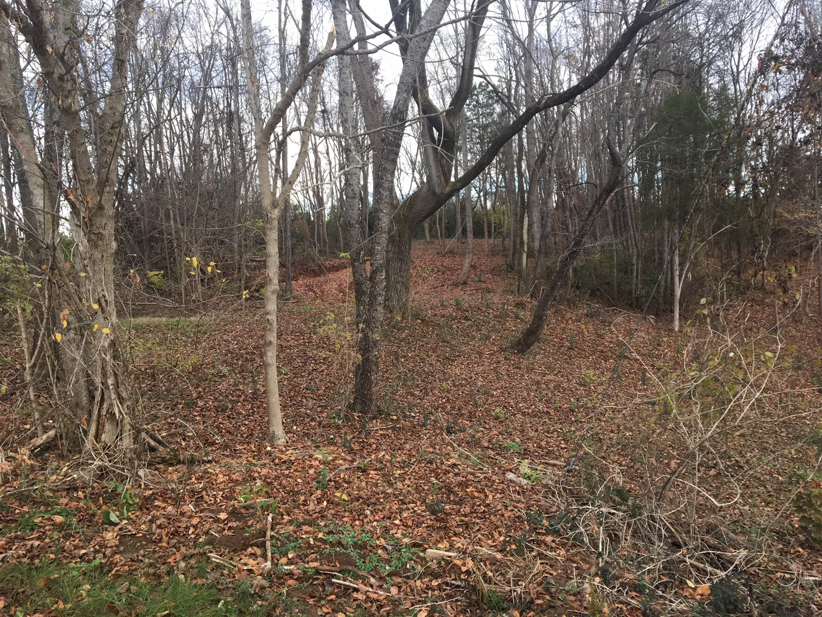 .75 Acre Lot For Sale in Morristown, TN