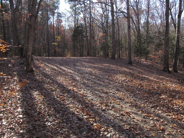 Building Lot In Pristine Lakefront Neighborhood On Kerr Lake