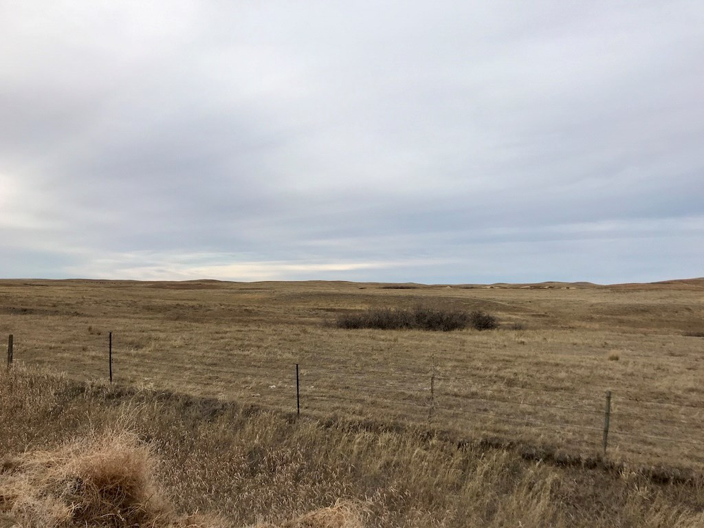 640 Acres of Pastureland for Sale in Richland County