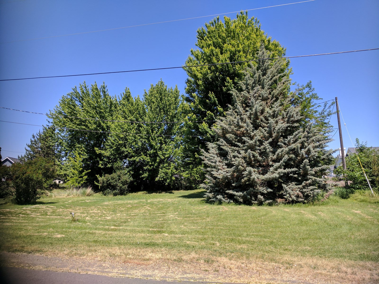 Residential Lot For Sale in College Place WA