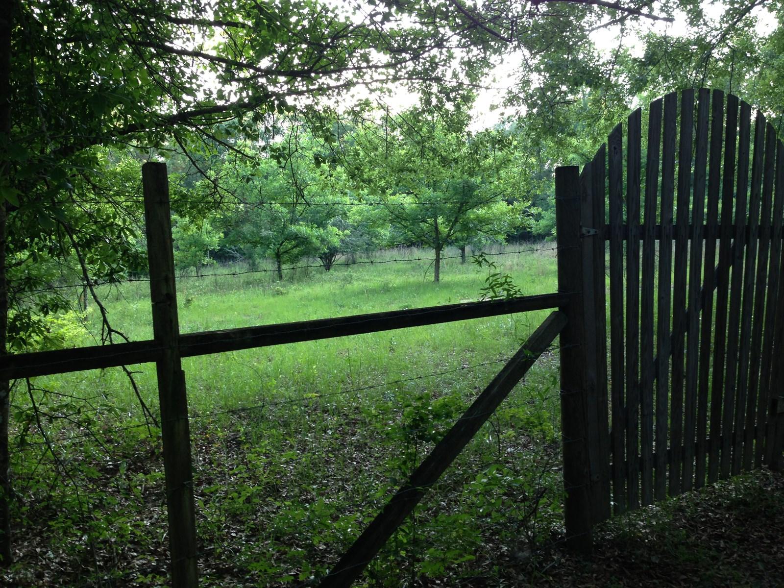 North Florida Land For Sale Near Monticello: