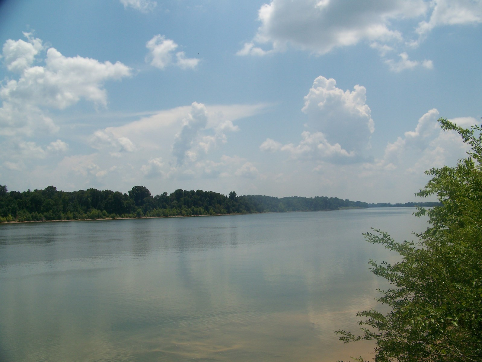 TENNESSEE RIVER FRONT LAND IN HARDIN COUNTY
