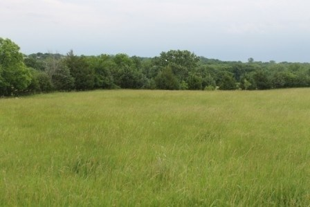 BUILDING LOT/ACREAGE FOR SALE IN POLO MO