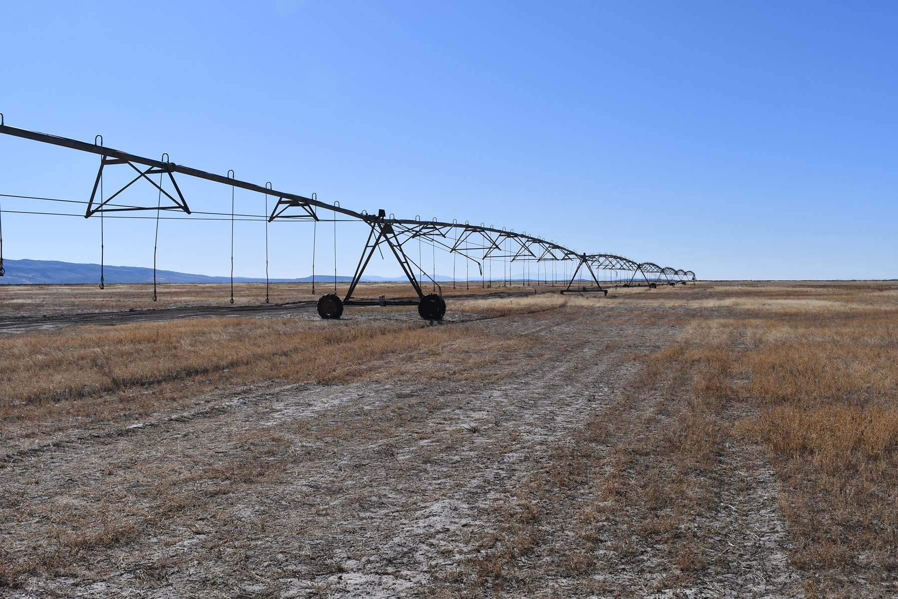 PIVOT IRRIGATED ACREAGE FOR SALE