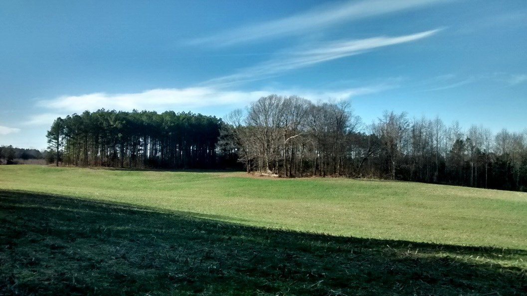 77.5 Acres in  Lunenburg, VA With Cropland, Timber & Water