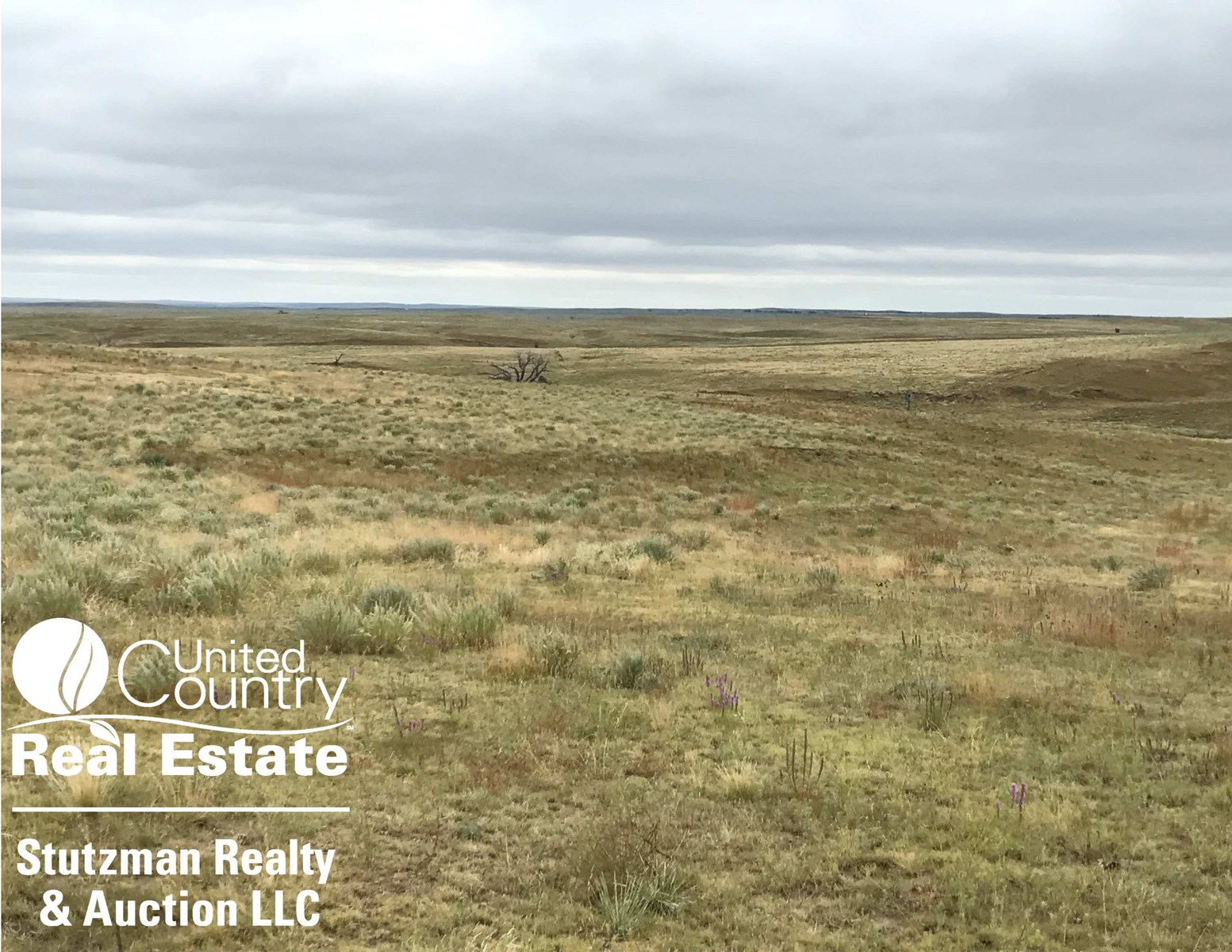 1,048 +/- ACRE RANCHLAND ~ MEADE COUNTY, KS ~ PRIVATE AUCTIO