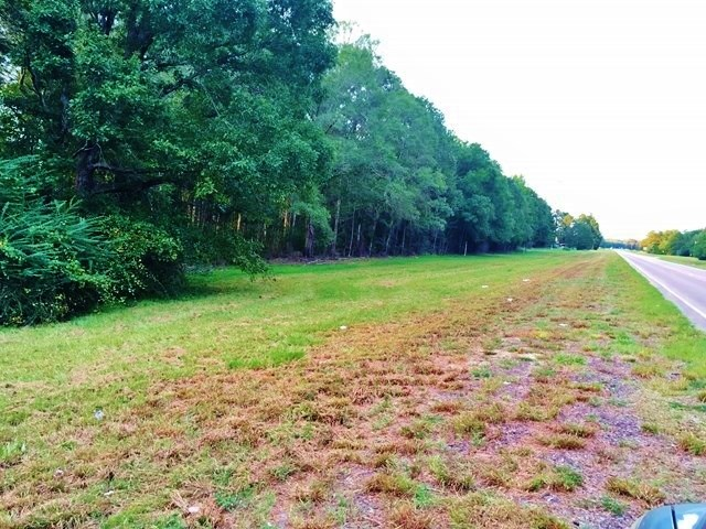 Large Acreage for Sale Near Columbia MS Hunting Development