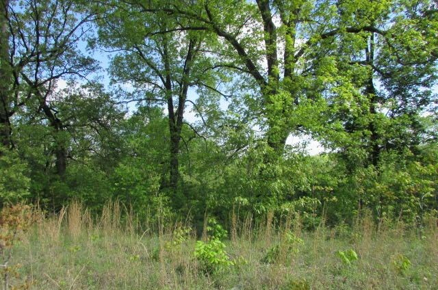 Land For Sale in Alton, Missouri
