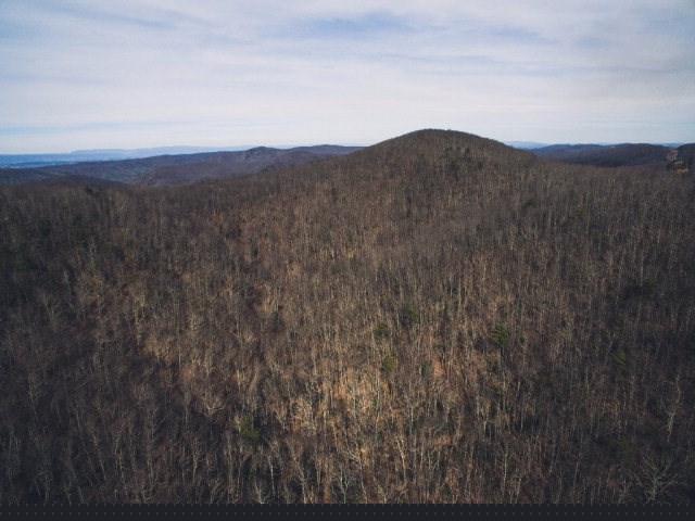 Timberland In Montgomery County, VA