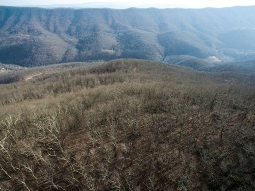 Giles County, VA Acreage For Sale