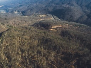 LARGE ACREAGE FOR SALE IN GILES COUNTY, VA