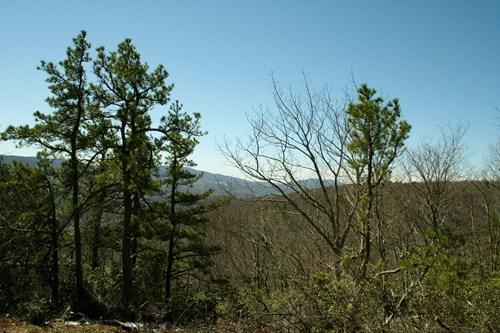25.74 acres in rural subdivision