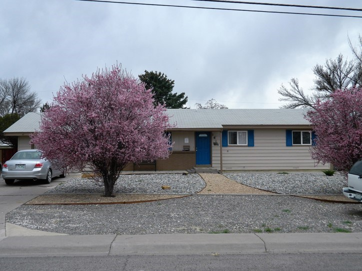 For Sale Residential Single Level Home in Montrose, Colorado