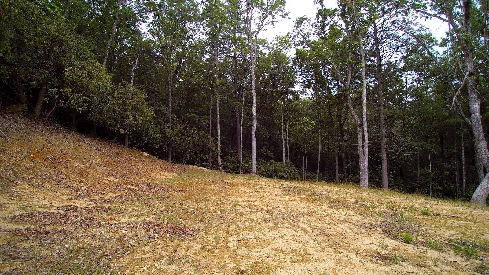 5 Acre Mountain Tract For Sale