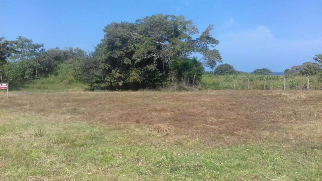 Country lot in Playa el Toro Pedasi PANAMA