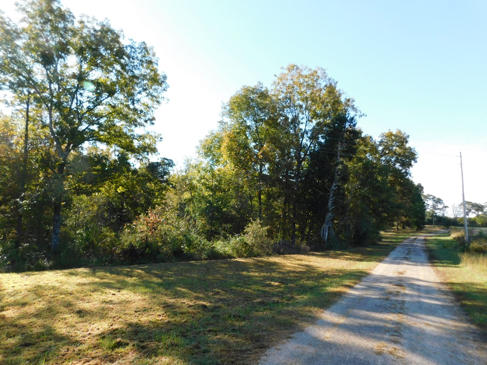 LAND TO BUILD ON NEAR PICKWICK LAKE WITH NO RESTRICTIONS