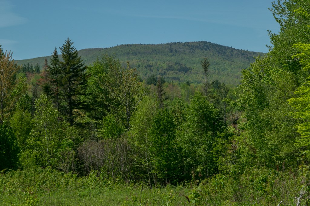 Maine Land for Sale in Avon