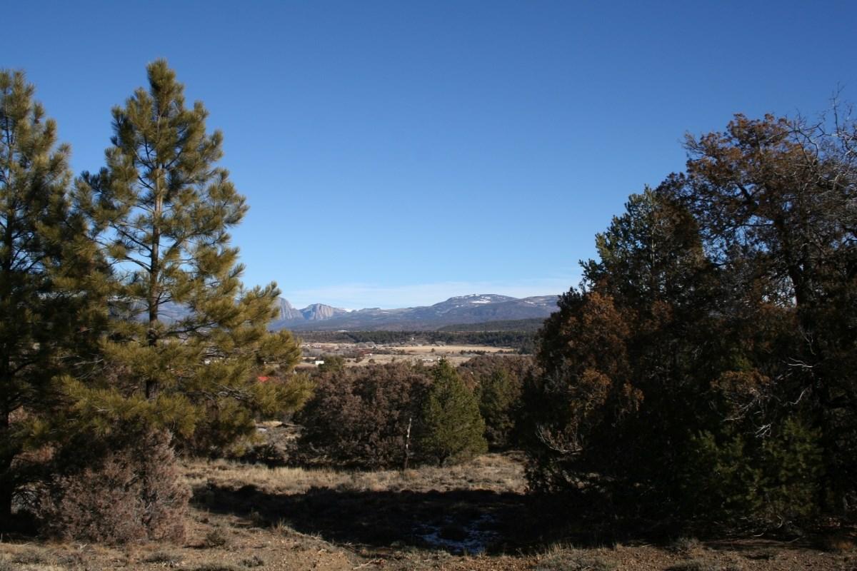 Land for sale near Heron Lake Northern NM Brazos cliff views