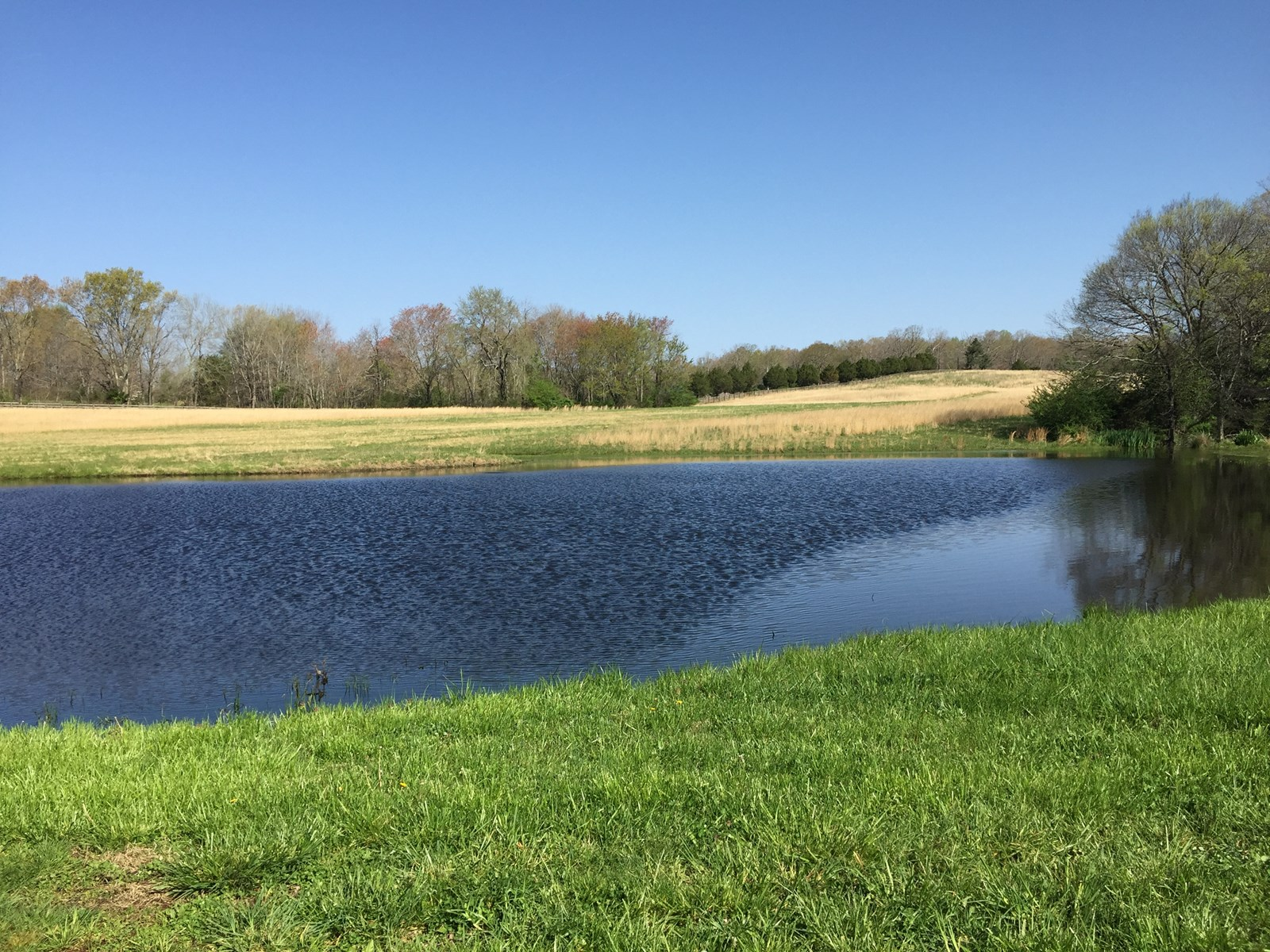 FARM FOR SALE IN TENNESSEE