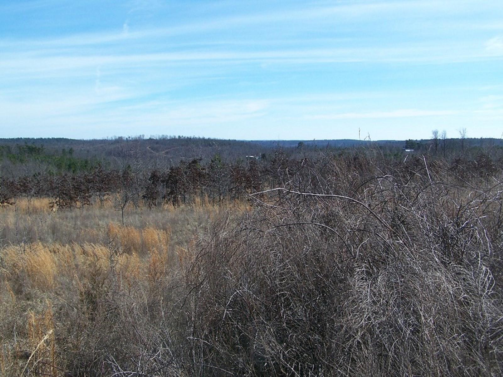 Central Arkansas Ozarks Recreational Land for Sale