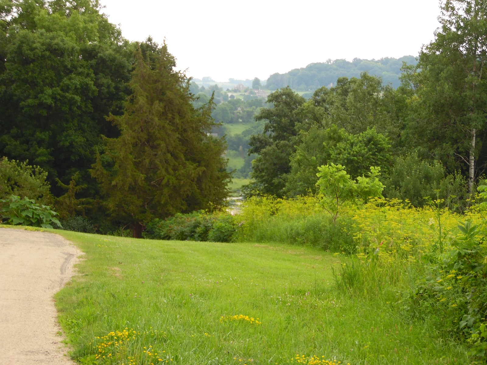 Building Lot for Sale in Galena