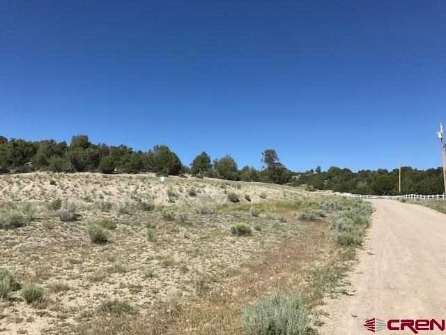 Land For Sale in Southwest Colorado-- Subdivide Possible