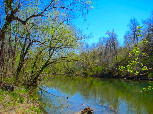 Arkansas Ozarks Southfork River Property for Sale - Salem