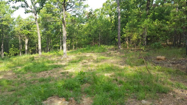 Hunting Land for Sale | Southeast Oklahoma | Recreational