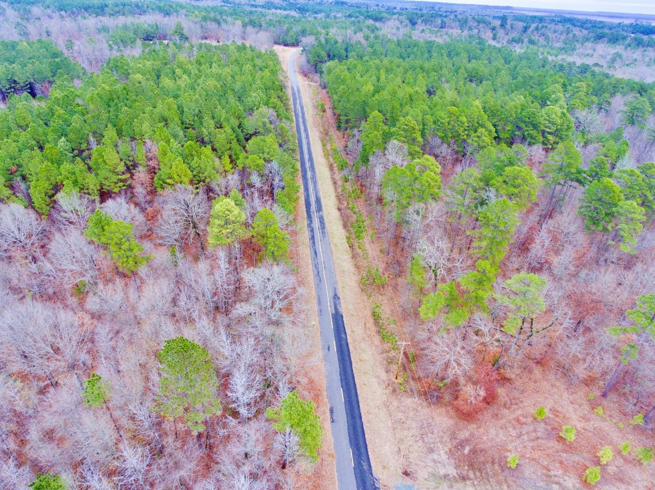 32.4 Acre Timber/ Development Investment, Ida, LA